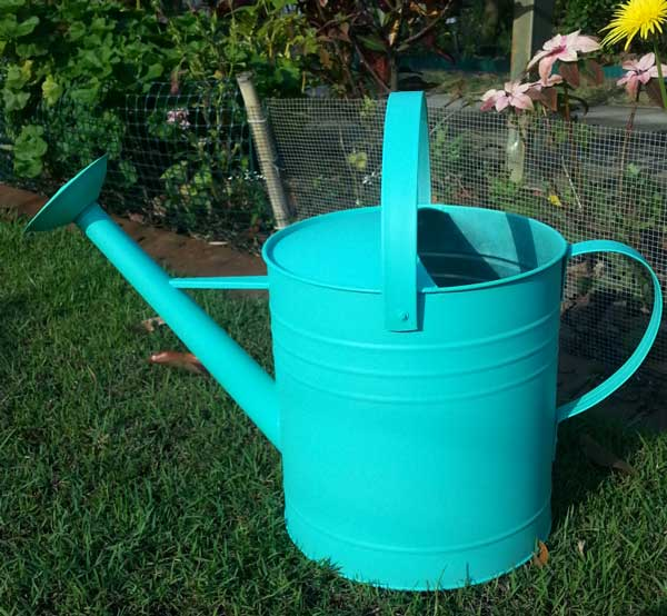 painted-watering-can-2