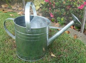 unpainted-watering-can